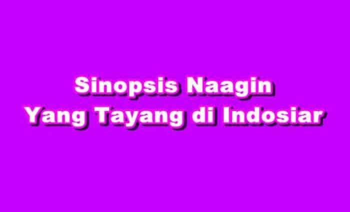 Sinopsis Naagin Episode 1 - 240 Terakhir