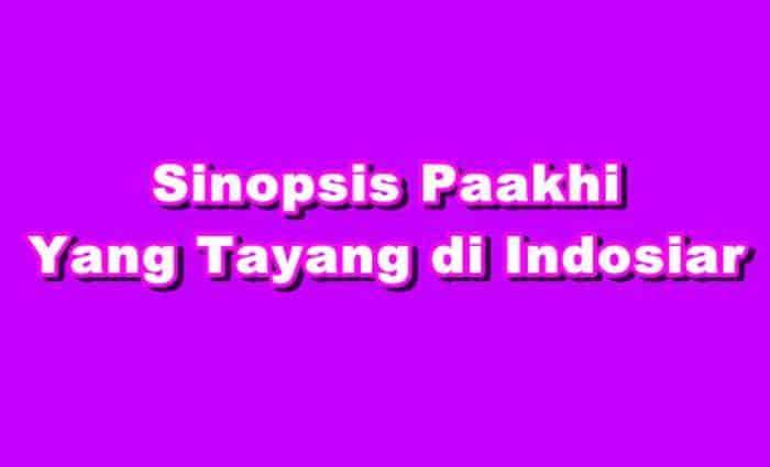 SINOPSIS Paakhi ANTV Episode 1 - 269 Terakhir Terlengkap