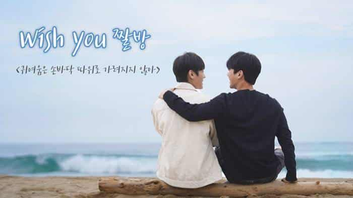 Wish You : Your Melody In My Heart (Web Drama Korea 2020)